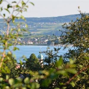 allensbach1